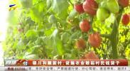 银川和顺新村:设施农业鼓起村民钱袋子-20210108
