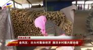 决胜全面小康| 金凤区:壮大村集体经济 激活乡村振兴新动能-20210109