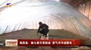海原县:数九寒天育新苗 喜气洋洋迎新年-20210113