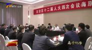 崔波参加自治区十二届人大四次会议海原县分团审议-20210129