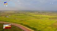 国家农业环境银川观测实验站正式挂牌-20210102