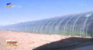 贺兰县设施农业助农增收-20210112