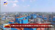 石嘴山市大武口区获批国家大众创业万众创新示范基地-20210117