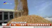 宁夏:一粒种子让农业高品质发展成色更足-20210118