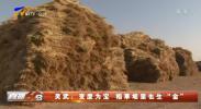 """灵武:变废为宝 稻草堆里也生""""金""""-20210216"""