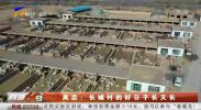 吴忠:长城村的好日子长又长-20210220