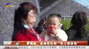 """青铜峡:连湖西红柿""""吃上旅游饭""""-20210223"""