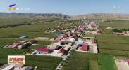 宁夏:加强设施农业用地管理 确保农地农用-20210221