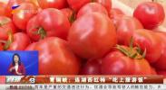 """青铜峡:连湖西红柿""""吃上旅游饭""""-20210228"""