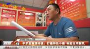 平罗县黄渠桥镇:打造特色小镇 树起文明新风-20210222