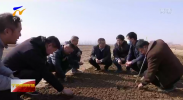 宁夏:良种良法配套 农机农艺融合备战春耕-20210223