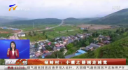 杨岭村:小之路越走越宽-20210228