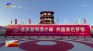 《山海情》热播带动宁夏产区葡萄酒热销-20210204