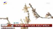 春季天气多变 农业生产如何应对-20210316