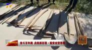 奋斗百年路 启航新征程·脱贫攻坚答卷 | 彭阳:造林队员的十八般兵器-20210313
