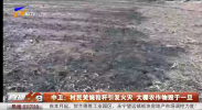 中卫:村民焚烧秸秆引发火灾 大棚农作物毁于一旦-20210318