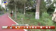 """银川:小微公园点""""靓""""城市-20210323"""