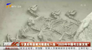 """宁夏彭阳县姚河塬遗址入选""""2020年中国考古新发现""""-20210406"""