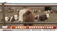 固原蒋河村:集体经济发展壮大结硕果-20210408