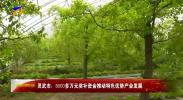 灵武市:8000多万元奖补资金推动特色优势产业发展-20210506