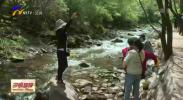 """新疆旅游专列开进""""天高云淡六盘山""""-20210514"""