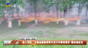 银川消防:近期杨柳絮堆积引发火火事故频发 需加强防范-20210513