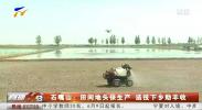 石嘴山:田间地头保生产 送技下乡助丰收-20210608