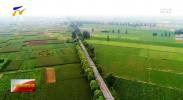 《2021阿里农产品电商报告》出炉 宁夏销售额增速全国第五-20210626