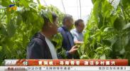 青铜峡:导师帮带 激活乡村振兴-20210604