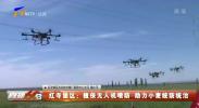 红寺堡区:植保无人机喷防 助力小麦统防统治-20210617