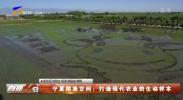 宁夏稻渔空间:打造现代农业的生动样本-20210611