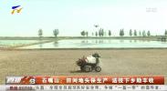 石嘴山:田间地头保生产 送技下乡助丰收-20210604