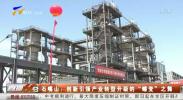 """石嘴山:创新引领产业转型升级的""""蝶变""""之舞-20210604"""