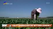 实施农产品地理标志保护工程 提升宁夏菜心品牌影响力-20210612