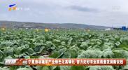 宁夏推动蔬菜产业绿色化高端化 奋力走好农业高质量发展新征程-20210727