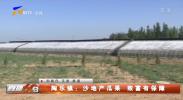 陶乐镇:沙地产瓜果 致富有保障-20210709