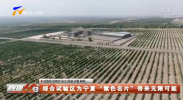 """综合试验区为宁夏""""紫色名片""""带来无限可能-20210709"""