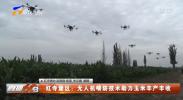 红寺堡区:无人机喷防技术助力玉米丰产丰收-20210709