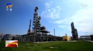 聚焦中阿博览会丨中阿能源合作高峰论坛嘉宾热议低碳清洁能源发展-20210822