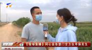 【现场直播】同心县各部门全力抗旱保民生-20210812