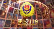 平安119-20210912