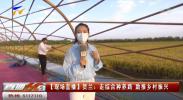 贺兰:走综合种养路 助推乡村振兴-20210908