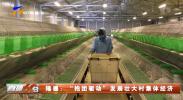 """隆德:""""抱团驱动""""发展壮大村集体经济-20210914"""