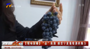 """【现场直播】""""品""""美酒 感受宁夏葡萄酒的魅力-20210922"""