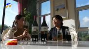 贺兰山下酒庄行  立兰酒庄:览众山之美 酿酒中之翠-20210924
