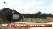 灵武市泾灵村:蜜瓜丰收采摘忙-20210910