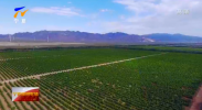 中国葡萄酒·当惊世界殊丨宁夏:以旅促融 推动葡萄酒与文化旅游产业美美与共融合发展-20210915