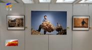"""""""乡村里的宁夏""""专题摄影展在宁夏博物馆开幕-20211004"""