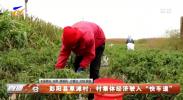 """彭阳县草滩村:村集体经济驶入""""快车道""""-20211011"""