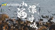 """""""时尚青岛 活力之城""""2021沿黄流域推介万里行走进银川-20211015"""